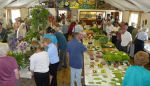 Picture of the flower show
